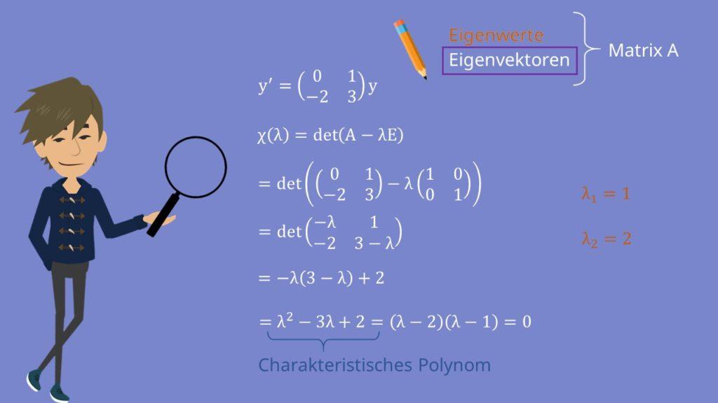 Charakteristisches Polynom in Systemen